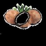 palazzina koco-logo